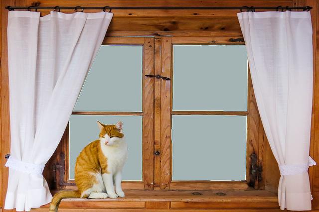 Holzfenster vs. Fenster/Fensterläden aus Aluminium